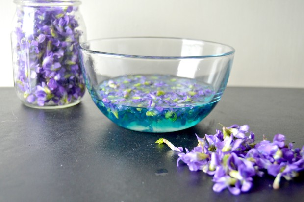 violetsimplesyrup1.jpg