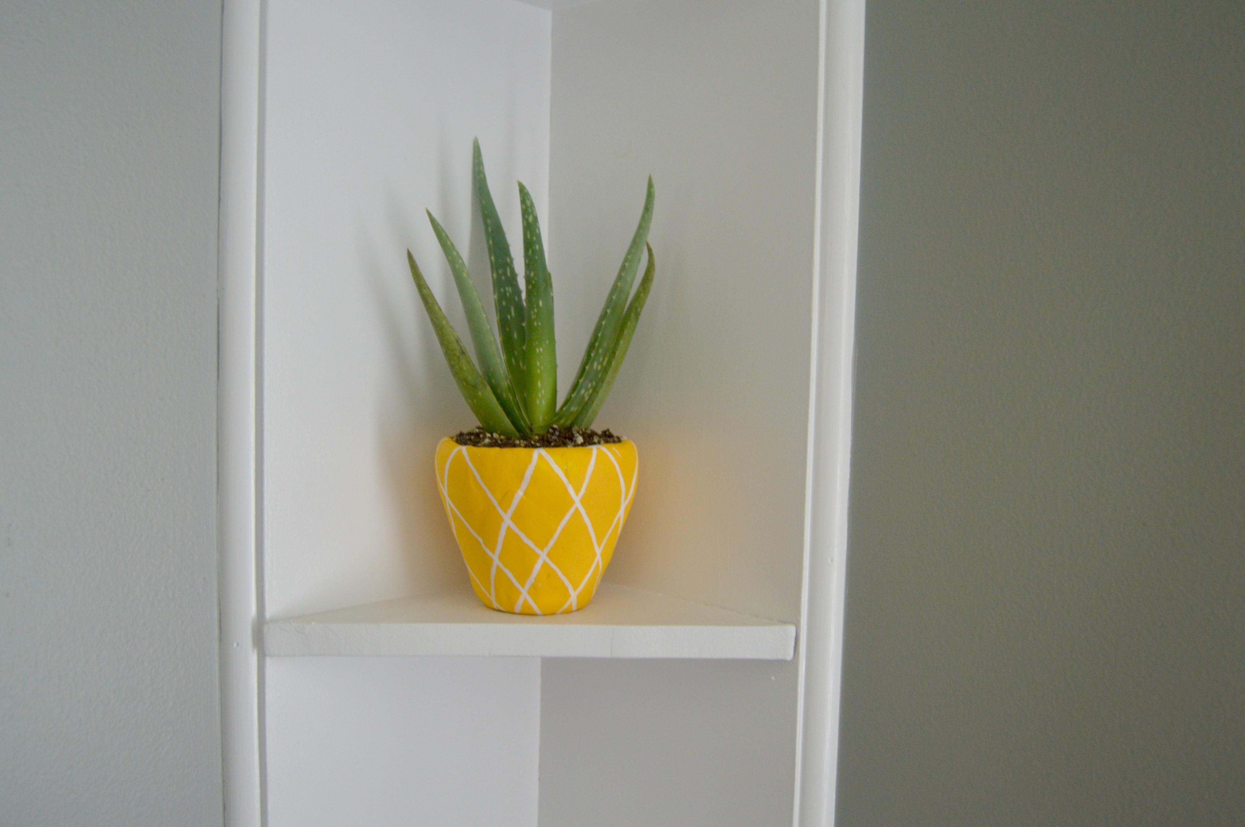 pineappleplanter5.jpg